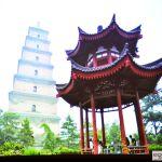 43.W tle Pagoda Dzikiej Gęsi
