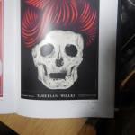 11.Plakat W. Strebejki z książki STREBEJKO Hanny Ciepieli