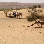 Mauretania - studnie