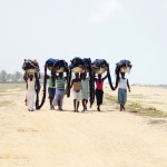 Togo - sieci zwinięte, koiety niosą je do wioski.